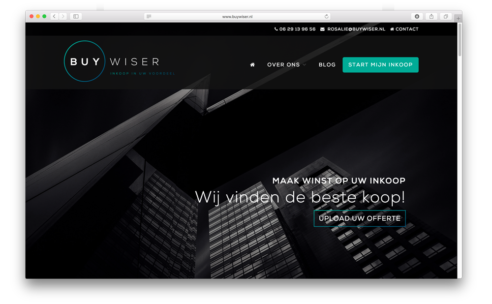 buywiser-site-screenshot